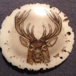Carved/ scrimshawed antler art piece